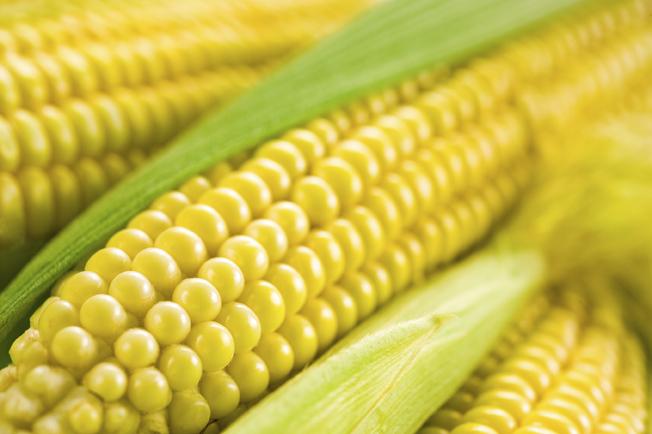 Freezing Corn and Making Corn Broth